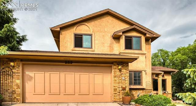 250 Wuthering Heights Drive, Colorado Springs, CO 80921 (#2796532) :: Symbio Denver