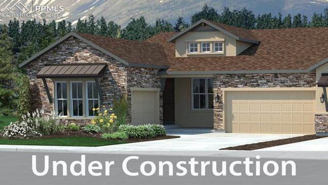 1625 Catnap Lane, Monument, CO 80132 (#2805995) :: Venterra Real Estate LLC