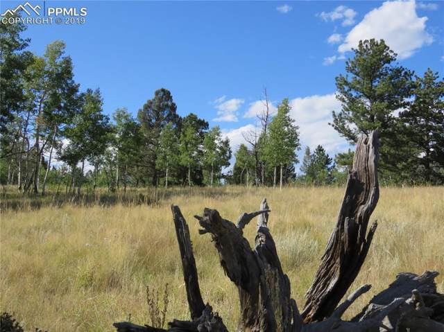 47 Summit Drive, Florissant, CO 80816 (#2809087) :: 8z Real Estate