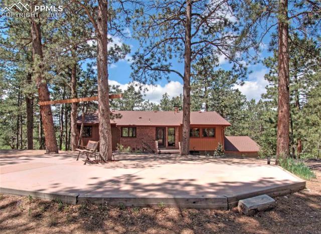 1380 Deer Creek Road, Monument, CO 80132 (#2809870) :: Harling Real Estate