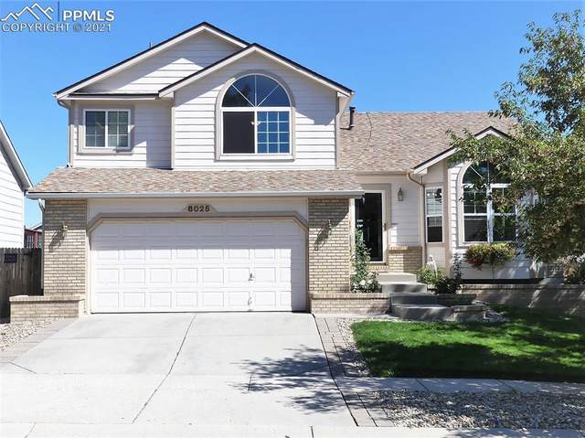 6025 Wheatgrass Drive, Colorado Springs, CO 80923 (#2812039) :: Tommy Daly Home Team