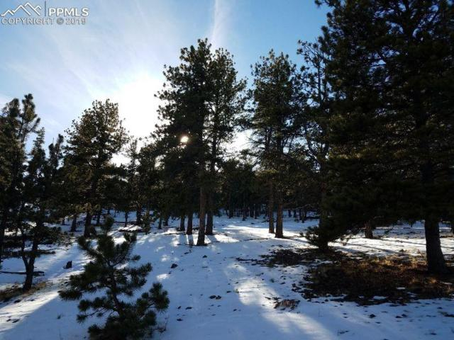 TBD Eagles Nest Lane, Hartsel, CO 80449 (#2812270) :: 8z Real Estate