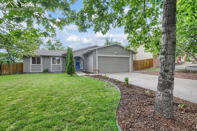 3470 Fair Dawn Drive, Colorado Springs, CO 80920 (#2812346) :: 8z Real Estate