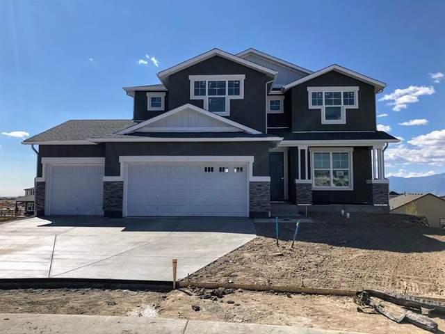 9028 Mahjong Court, Colorado Springs, CO 80924 (#2814238) :: Venterra Real Estate LLC