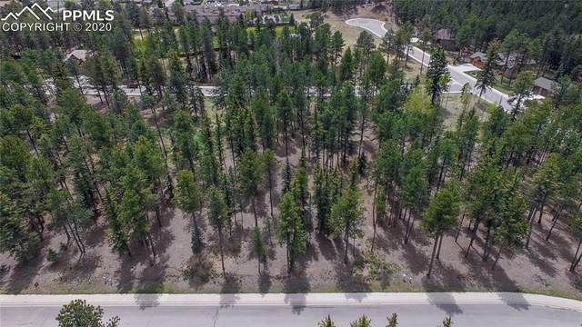 625 Chipmunk Drive, Woodland Park, CO 80863 (#2818009) :: Jason Daniels & Associates at RE/MAX Millennium