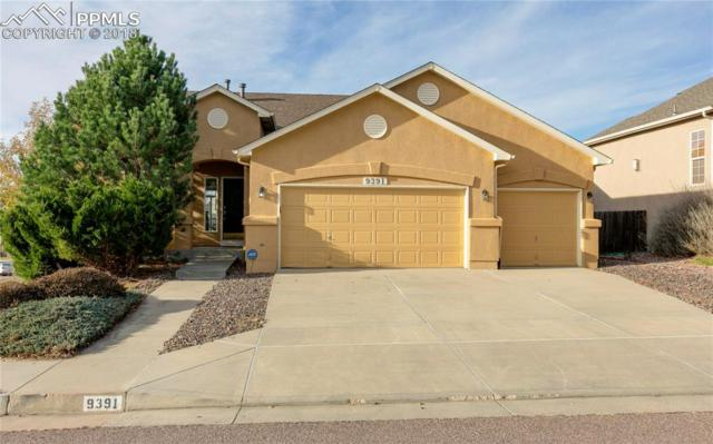 9391 Wolf Pack Terrace, Colorado Springs, CO 80920 (#2822762) :: The Hunstiger Team