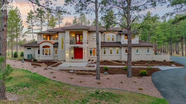 10957 Silver Mountain Point, Colorado Springs, CO 80908 (#2824132) :: The Peak Properties Group