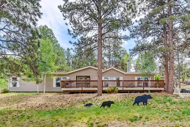 170 Rhyolite Lane, Florissant, CO 80816 (#2832089) :: The Daniels Team
