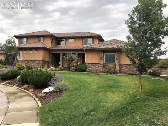 13665 Random Ridge View, Colorado Springs, CO 80921 (#2832433) :: The Hunstiger Team