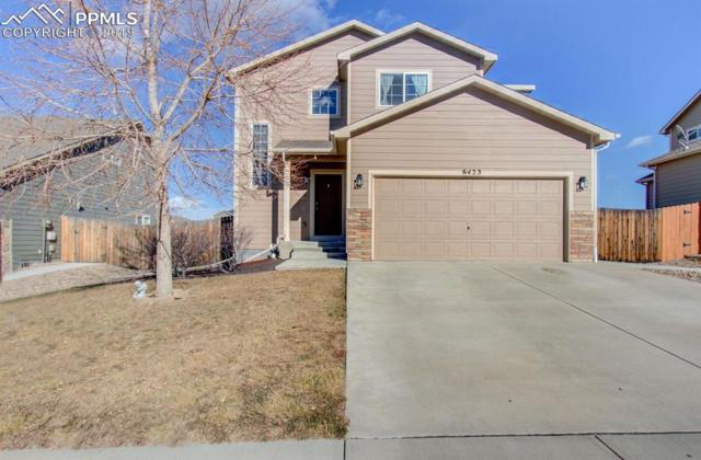 6423 Passing Sky Drive, Colorado Springs, CO 80911 (#2833860) :: Action Team Realty