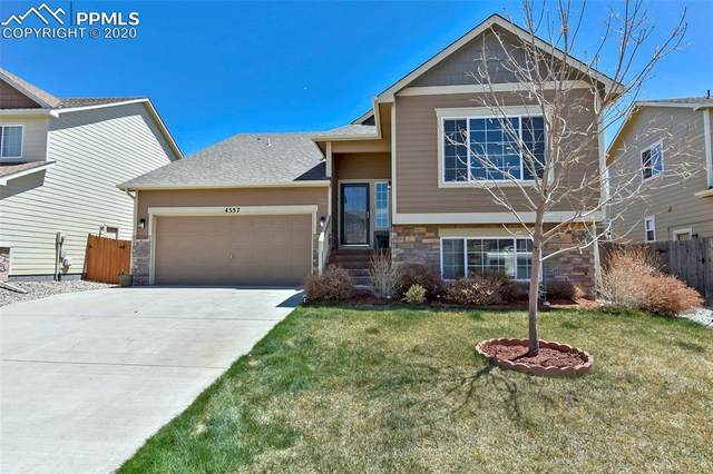 4557 Horse Tooth Road, Colorado Springs, CO 80911 (#2837185) :: The Kibler Group