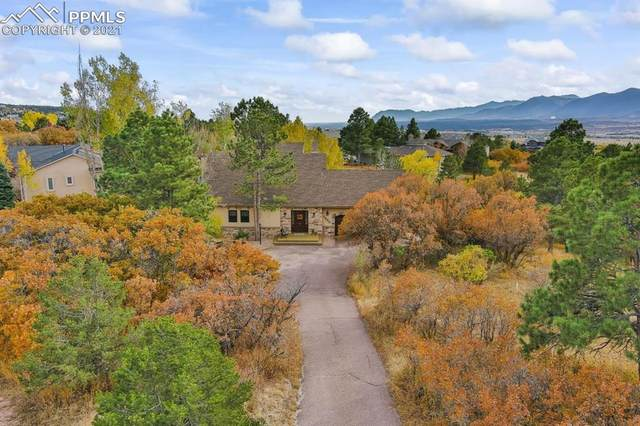 1250 Meadowlake Way, Monument, CO 80132 (#2837584) :: You 1st Realty