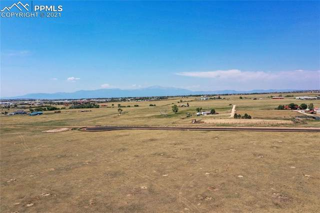 8625 Bailiff Drive, Peyton, CO 80831 (#2838171) :: Tommy Daly Home Team