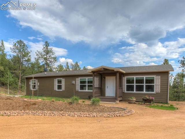 351 Pike View Drive, Divide, CO 80814 (#2838670) :: CC Signature Group