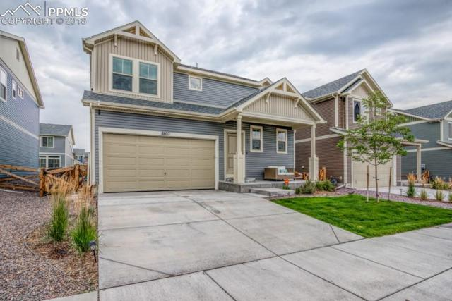 8803 Briar Brush Lane, Colorado Springs, CO 80927 (#2843483) :: The Hunstiger Team