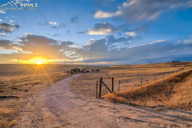 23501 County Road 5, Elbert, CO 80106 (#2844567) :: Action Team Realty