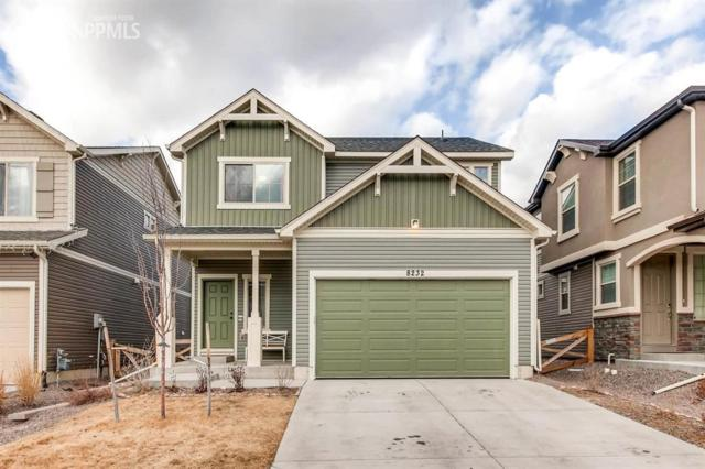8232 Plumwood Circle, Colorado Springs, CO 80927 (#2844766) :: 8z Real Estate
