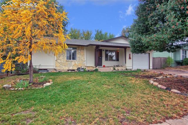 339 Kenady Circle, Colorado Springs, CO 80910 (#2849898) :: 8z Real Estate