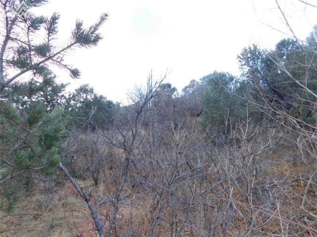 0 TBD Puma Path, Manitou Springs, CO 80829 (#2851505) :: 8z Real Estate