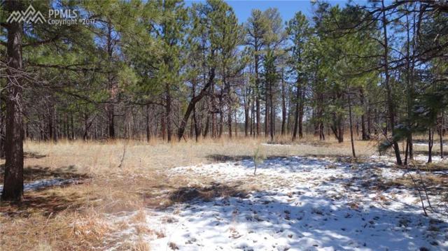 10590 Armonia Ranch Court, Colorado Springs, CO 80908 (#2856309) :: 8z Real Estate