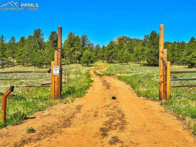 8965 A County Road 1, Florissant, CO 80816 (#2857861) :: Fisk Team, eXp Realty