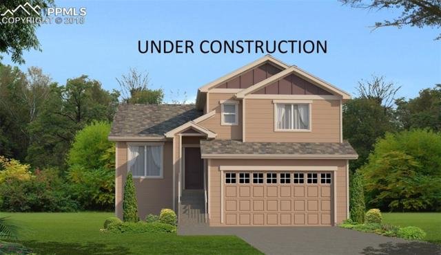 11523 Ducal Point, Peyton, CO 80831 (#2859058) :: Action Team Realty