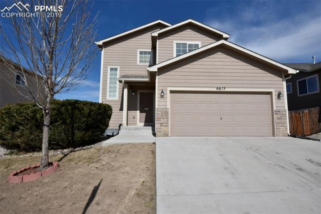 6615 Passing Sky Drive, Colorado Springs, CO 80911 (#2859181) :: Tommy Daly Home Team
