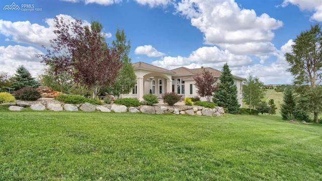 19612 Falcon Crest Court, Monument, CO 80132 (#2860584) :: 8z Real Estate