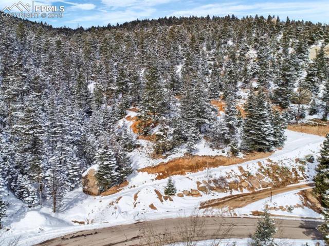 338 Upper Vista Road, Manitou Springs, CO 80829 (#2861210) :: Colorado Home Finder Realty