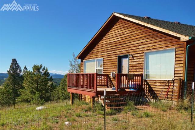 784 N Mountain Estates Road, Florissant, CO 80816 (#2862484) :: 8z Real Estate