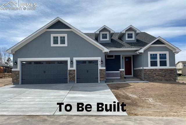 14172 Stone Eagle Place, Colorado Springs, CO 80921 (#2867105) :: Tommy Daly Home Team