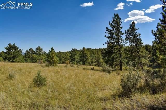 674 Pikes Trail, Guffey, CO 80820 (#2868810) :: The Daniels Team