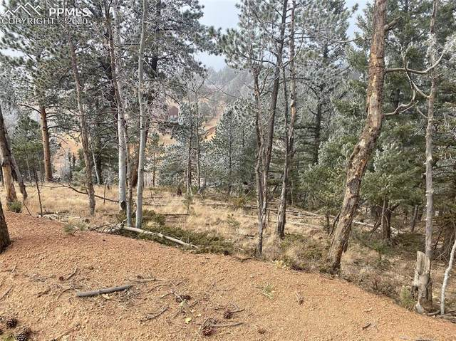 303 Cottonwood Lake Drive, Divide, CO 80814 (#2874945) :: The Kibler Group