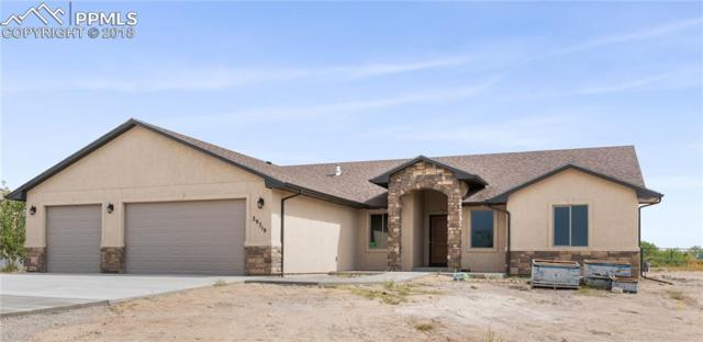 29719 South Road, Pueblo, CO 81006 (#2876611) :: Action Team Realty