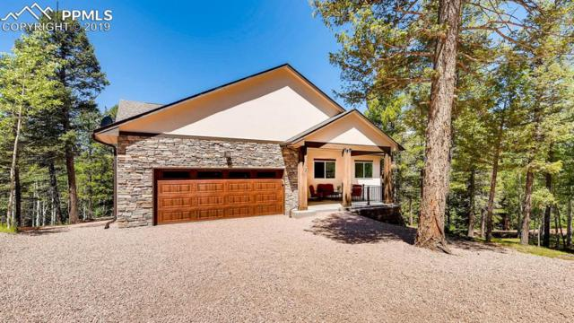 57 Cradle Lake Place, Divide, CO 80814 (#2876745) :: HomePopper