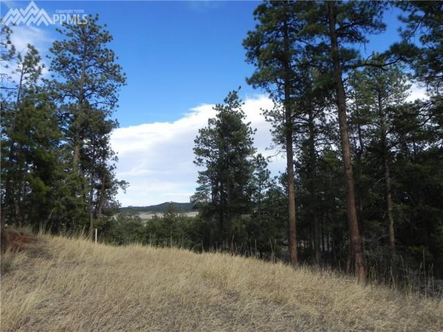 4170 Cheyenne Drive, Larkspur, CO 80118 (#2878501) :: 8z Real Estate