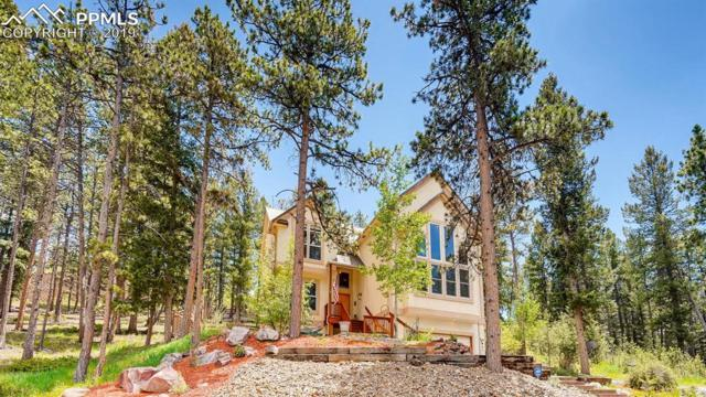 951 Heather Court, Woodland Park, CO 80863 (#2880373) :: 8z Real Estate