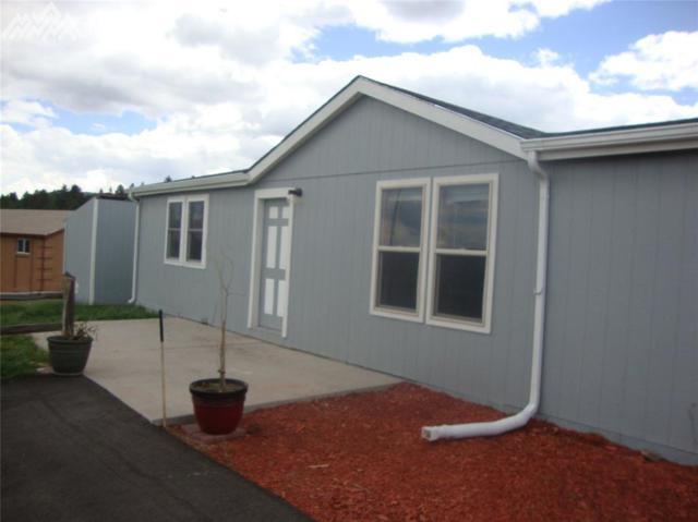 150 Will Scarlet Drive, Divide, CO 80814 (#2884870) :: 8z Real Estate
