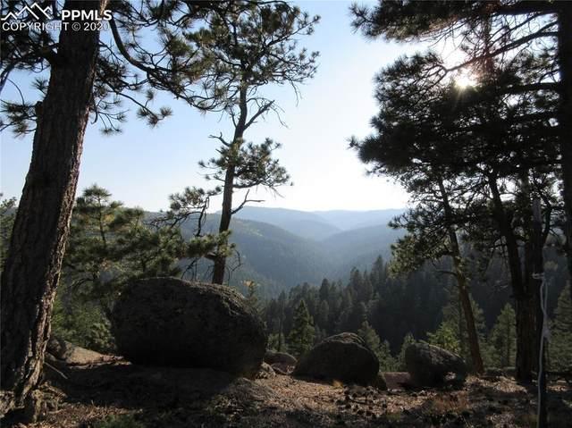 14037 Boulder Lane, Larkspur, CO 80118 (#2885807) :: 8z Real Estate