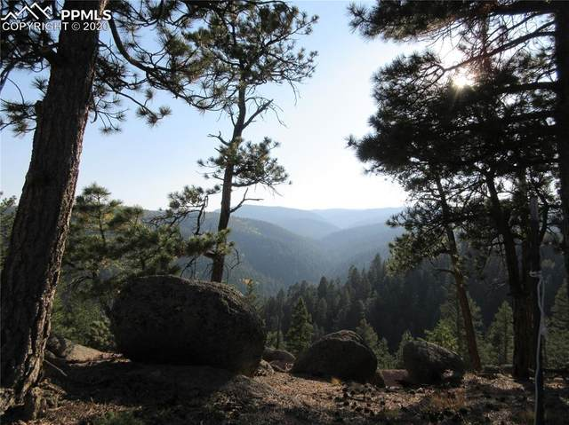 14037 Boulder Lane, Larkspur, CO 80118 (#2885807) :: The Treasure Davis Team