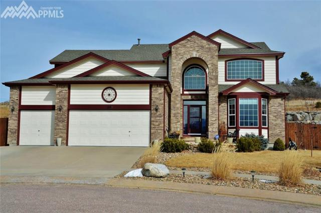 1098 Prickly Pear Place, Colorado Springs, CO 80921 (#2886136) :: Action Team Realty