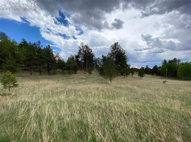 126 Adair Circle, Florissant, CO 80816 (#2889310) :: The Treasure Davis Team