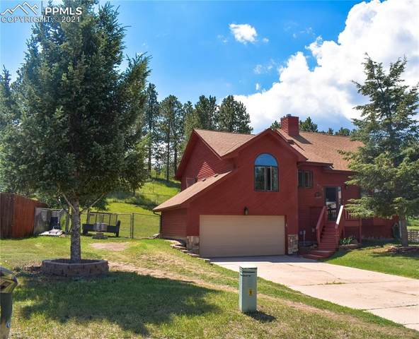 1975 Valley View Drive, Woodland Park, CO 80863 (#2891177) :: The Dixon Group