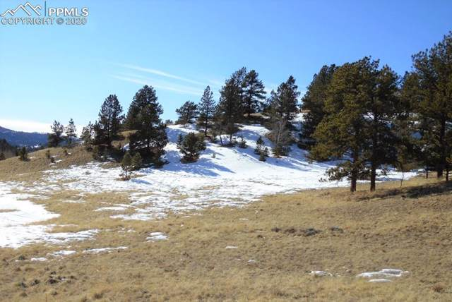1306 County 122 Road, Guffey, CO 80820 (#2892155) :: Harling Real Estate