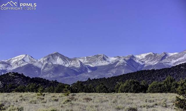 705 Riggs Road, Westcliffe, CO 81252 (#2894395) :: CC Signature Group