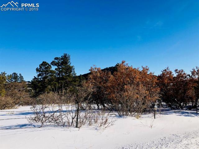 0 Columbine Road, Palmer Lake, CO 80133 (#2895614) :: Tommy Daly Home Team