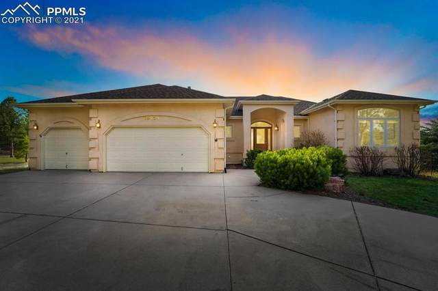 20230 Silver Horn Lane, Monument, CO 80132 (#2896240) :: The Dixon Group