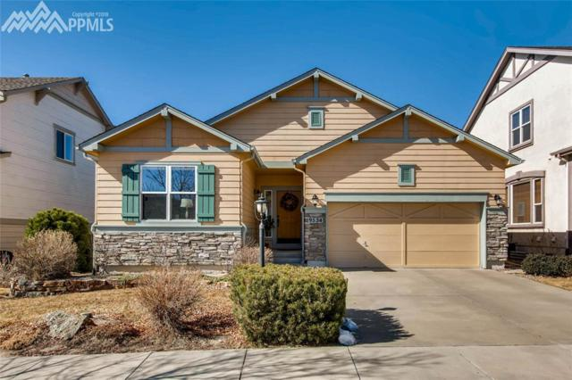 9534 Newport Plum Court, Colorado Springs, CO 80920 (#2909939) :: Jason Daniels & Associates at RE/MAX Millennium