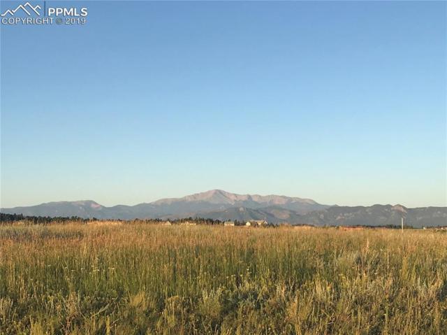 4257 Silver Nell Drive, Colorado Springs, CO 80908 (#2911812) :: Jason Daniels & Associates at RE/MAX Millennium