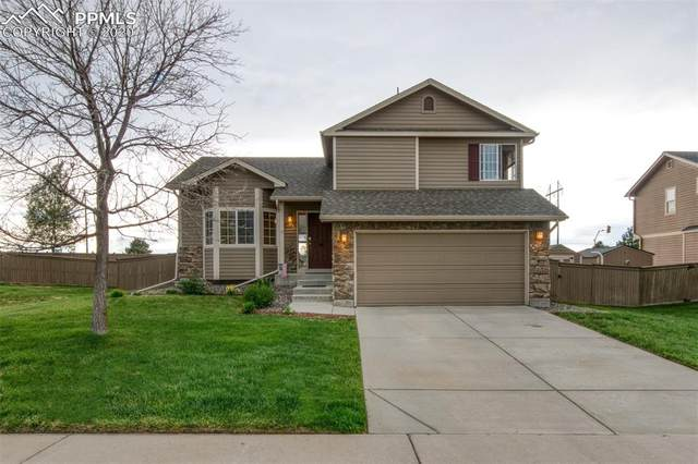 4819 Being Verified Street, Castle Rock, CO 80104 (#2911883) :: Colorado Home Finder Realty